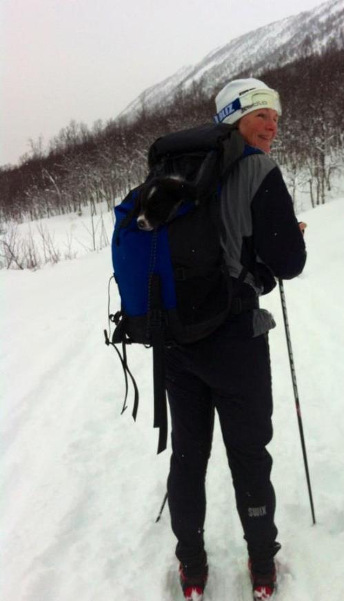 Spiff på skitur